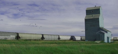 The real Brant, Alberta elevator in its full glory