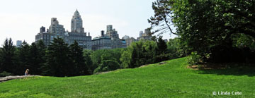 Linda Cote-central park