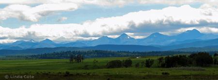 Linda Cote-prairie foothills