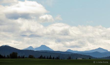 Linda Cote-prairie foothills2