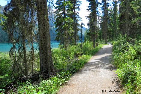 Linda Cote-Emerald Lake Forest