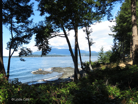 Linda Cote-Forest and Pacific Ocean