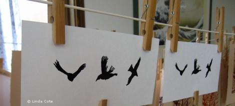 LINDA COTE-Printed Birds