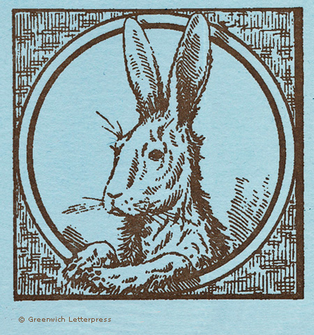 LINDA COTE-Greenwich LP Bunny
