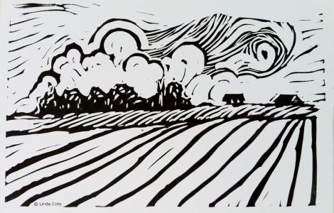 LINDA COTE-Field Postcard