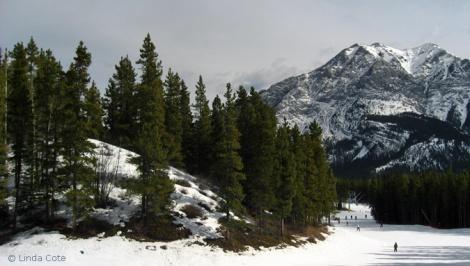 LINDA COTE-Nakiska Mountain