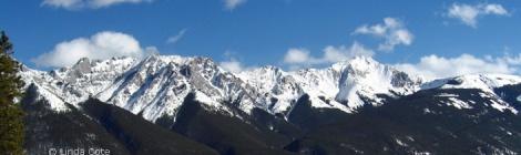 LINDA COTE-Skiing featured