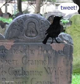 LINDA COTE-Tweeting bird