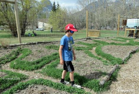 LINDA COTE-Community Garden 2