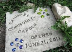 LINDA COTE-Community Garden 6