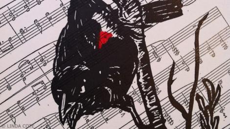 LINDA COTE-Blackbird print red-det