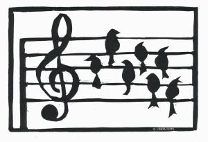 LINDA COTE-Major Birds