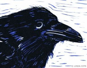 LINDA COTE-Young Raven detail
