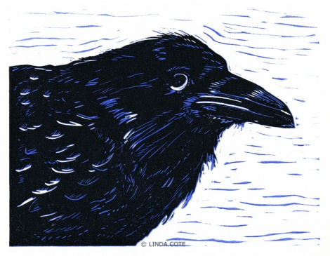 LINDA COTE-Young Raven