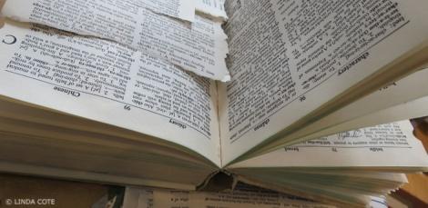 LINDA COTE-Book