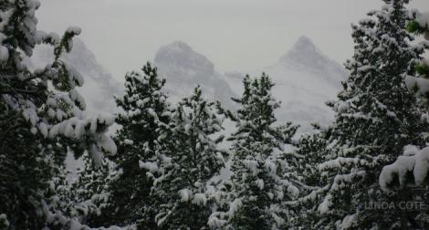 LINDA COTE-Mountain Snow