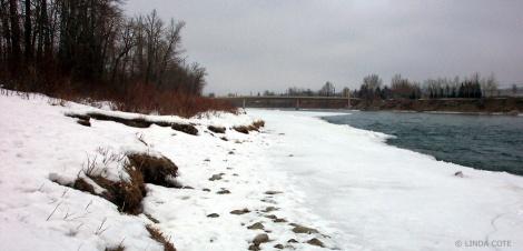 LINDA COTE-Winter walk