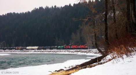 LINDA COTE-Winter walk 4