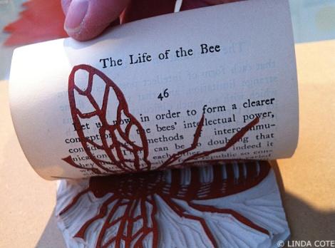 LINDA COTE-bee print