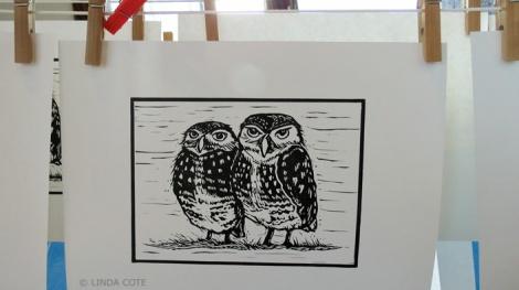 LINDA COTE-Burrowing Owl print