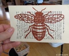 LINDA COTE-Life of Bee page