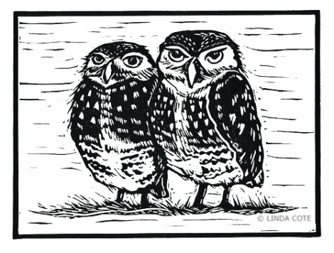 LINDA COTE-Little Burrowing Owls