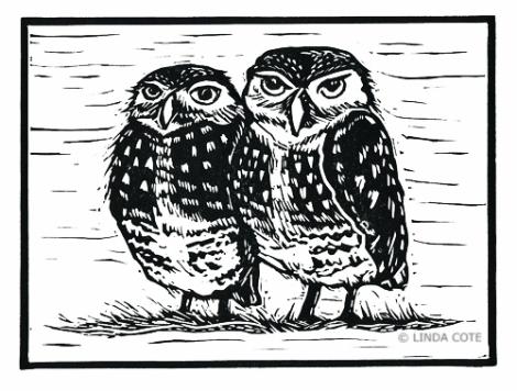 LINDA COTE-Little Burrowing Owls