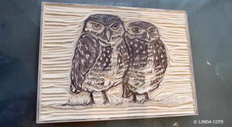 LINDA COTE-Owl block final
