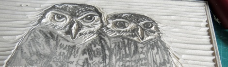LINDA COTE-Owl feature