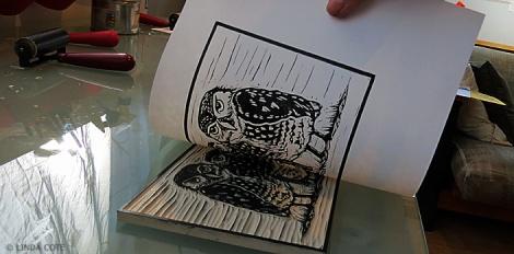 LINDA COTE-Owl print