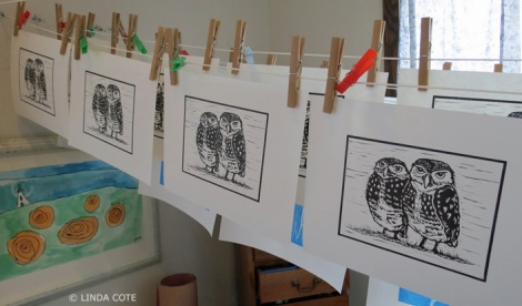 LINDA COTE-Owl prints drying