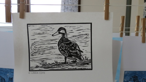 LINDA COTE-Duck print