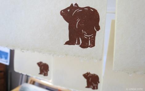 LINDA COTE-Bear print