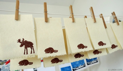 LINDA COTE-Moose-Beaver notes