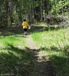 LINDA COTE-nature walk