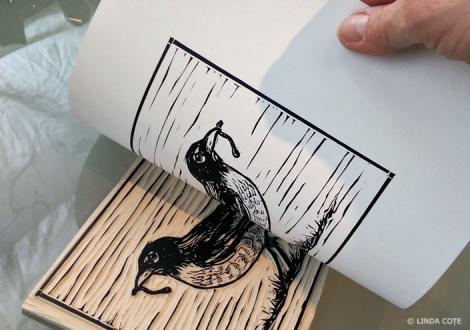 LINDA COTE-Robin print