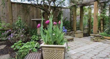 LINDA COTE-June Hunter garden