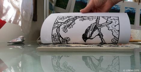 LINDA COTE-Pull Magpie Print