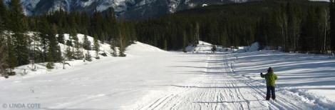 Linda Cote skiing feat