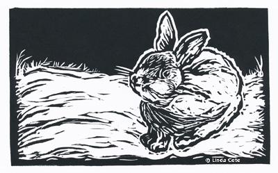 LINDA COTE-Backyard-Bunny