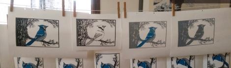 LINDA COTE-Blue Jay hanging in studio