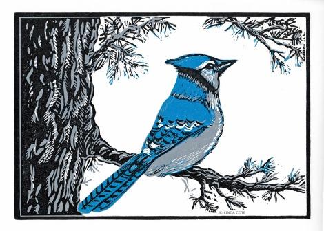 LINDA COTE-Blue Jay's Perch
