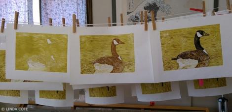 LINDA COTE-All 3 layers goose
