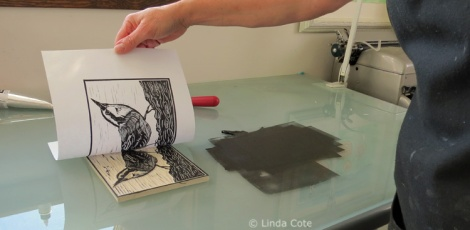 LINDA COTE-Nuthatch Ink pull