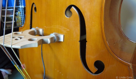 LINDA COTE-Music